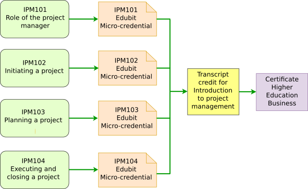 IPM-Miro-Credential Pathways.png