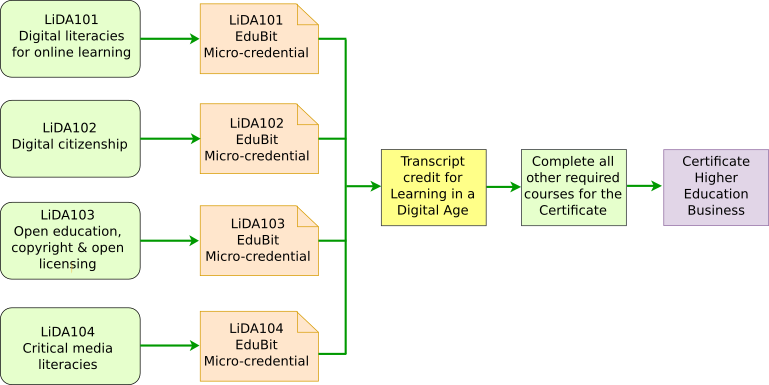 LiDA - Miro-Credential Pathways.png