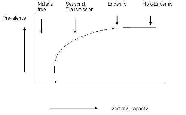 Image:Vectoralcapacityt.jpg