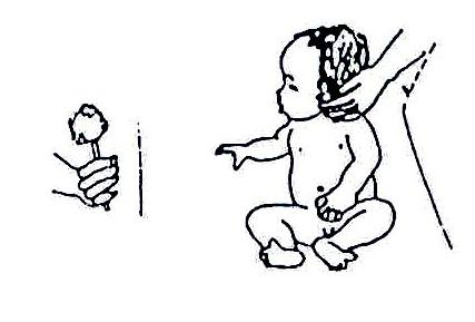lesson 20 disability and rehabilitation part 2 wikieducator Pediatric Occupational Therapy Activities stimulatingadelayedchild