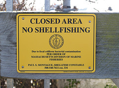Closed Area No Shellfishing Sign (Woods Hole MA).jpg