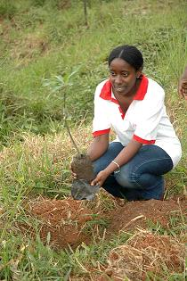 A student enjoys the tree planting activity