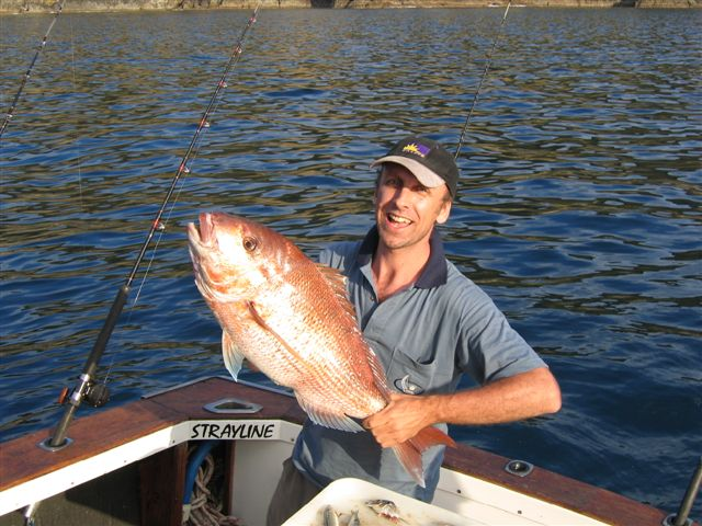 Bay of Islands snapper.jpg