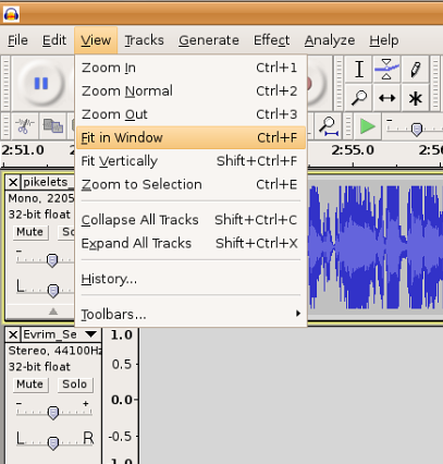 Image:Audacity-fitinwindow.png