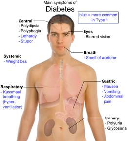 gall bladder diet after removal examination