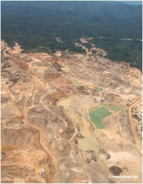 The effects of deforestation on the earth s spheres