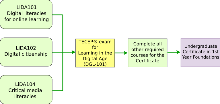 LiDA - Micro-Credential Pathways-TESU.png