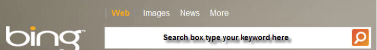 OP browser search-box.png