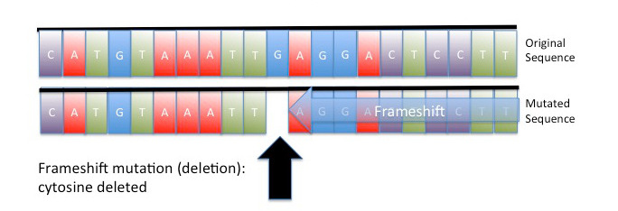 Image: Illustration of a deletion mutation