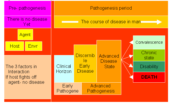 History of diseases.PNG