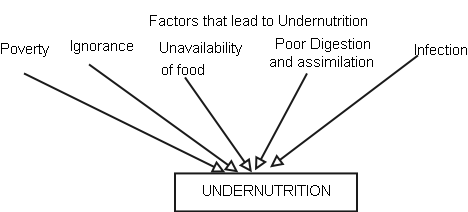 difference between malnutrition and undernutrition pdf