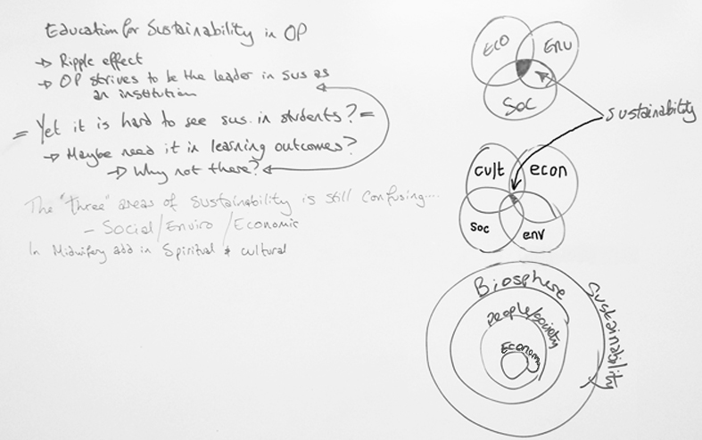 EfS in OP Reflections and models of Sustainability.jpg