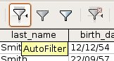 Oo-dbms-queries-filter-AutoFilter.jpg