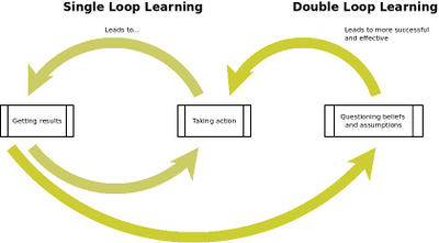 Double Loop Learning | Hawaii Reporter