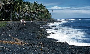 Black Sand Beach  Hawaii