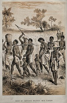 Image: Group of men and women being taken to a slave market.