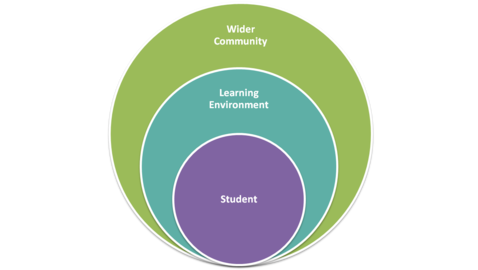 curriculum and the social context of The school and the curriculum curriculum development usually does not explicitly address the social context in which learning takes place.