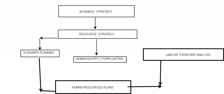 Lesson5ncept of human resources planning wikieducator the process of human resource planning ccuart Image collections
