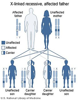 Illustration of X linked recessive inheritance