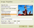 Image properties thumbnail activity.png