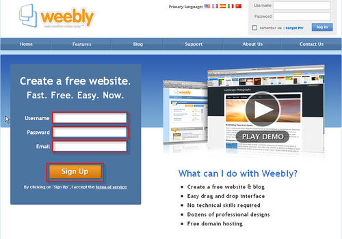 DCT-weebly-homepage.jpg