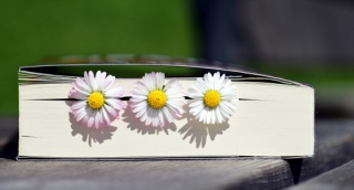 Flower-bookmarks.jpg