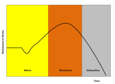 Figure 1 - An alarm reaction (fight or flight) is the body's initial response to stress. However, resistance to stress over a long period of time leads to exhaustion.